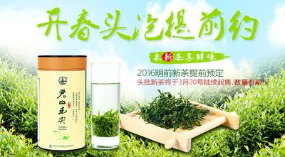 君山银针 春茶 茶礼 礼盒装十大名茶 茶叶250克4